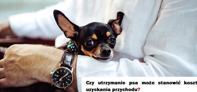 Czy utrzymanie psa może stanowić koszt uzyskania przychodu?